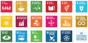 Using Technology to Achieve SDGs in Pakistan