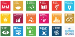 Using Technology to Achieve SDGs in Pakistan