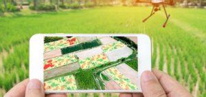 Digital farming (E-Agriculture) essential for Pakistan's Green revolution